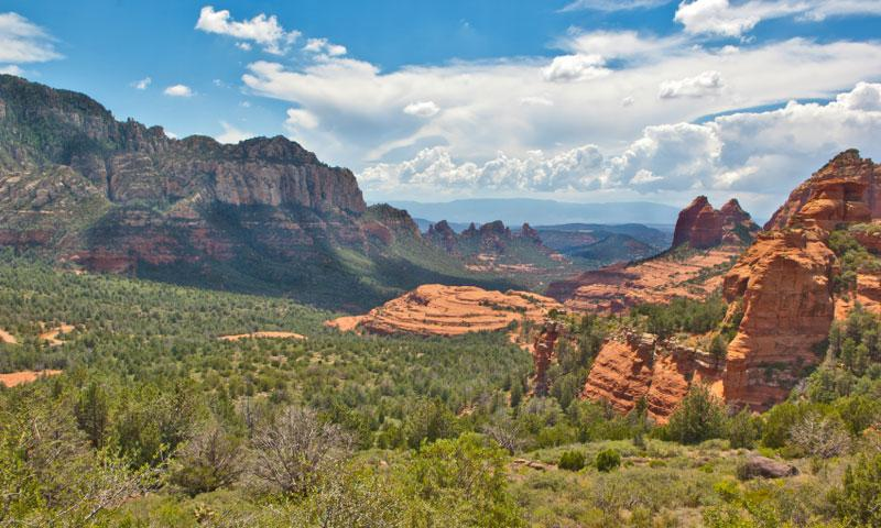 Oak Creek Canyon in Sedona Arizona