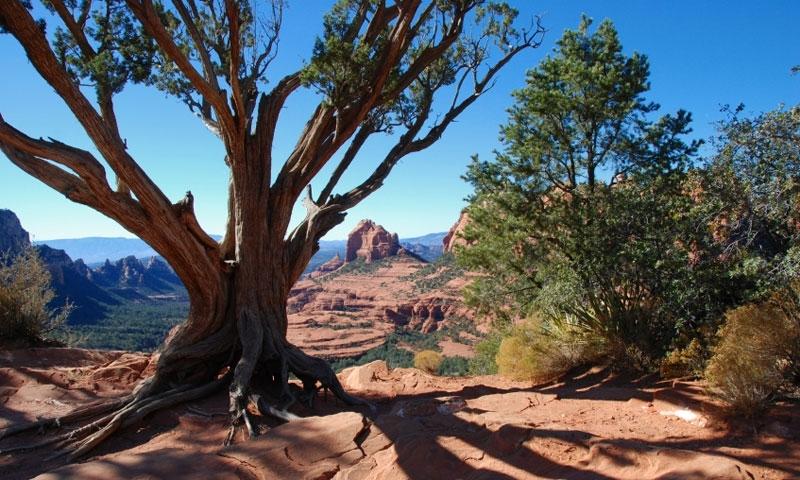 All Seasons Rv >> Sedona Arizona Vortexes - AllTrips