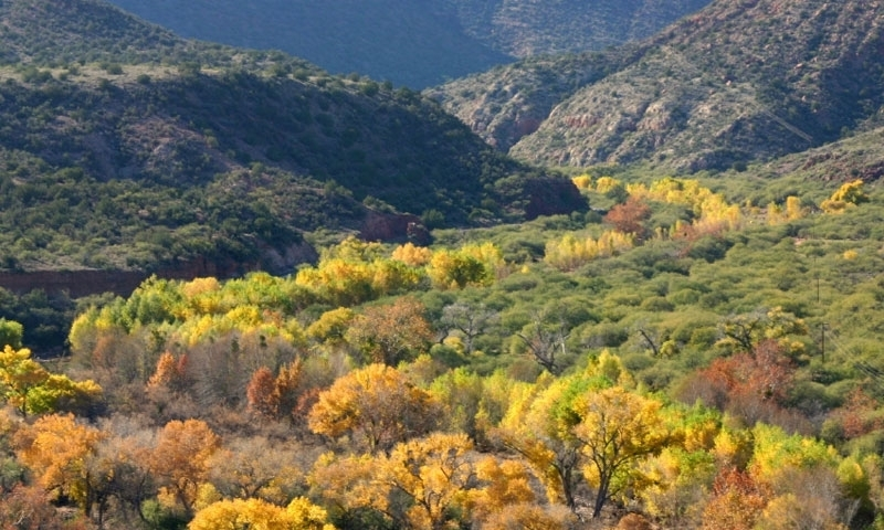 Verde River and Sycamore Canyon in Sedona